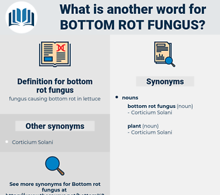 bottom rot fungus, synonym bottom rot fungus, another word for bottom rot fungus, words like bottom rot fungus, thesaurus bottom rot fungus