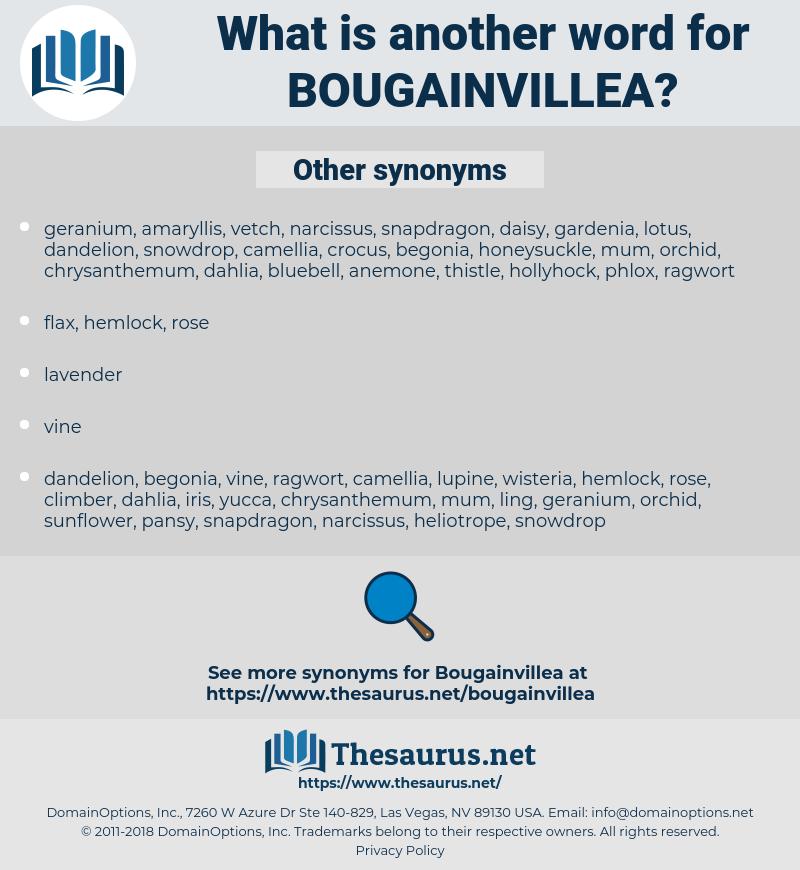 bougainvillea, synonym bougainvillea, another word for bougainvillea, words like bougainvillea, thesaurus bougainvillea