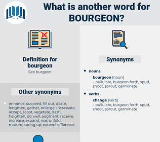 bourgeon, synonym bourgeon, another word for bourgeon, words like bourgeon, thesaurus bourgeon