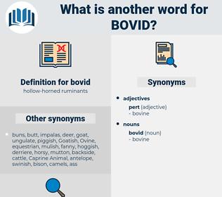 bovid, synonym bovid, another word for bovid, words like bovid, thesaurus bovid