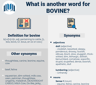 bovine, synonym bovine, another word for bovine, words like bovine, thesaurus bovine