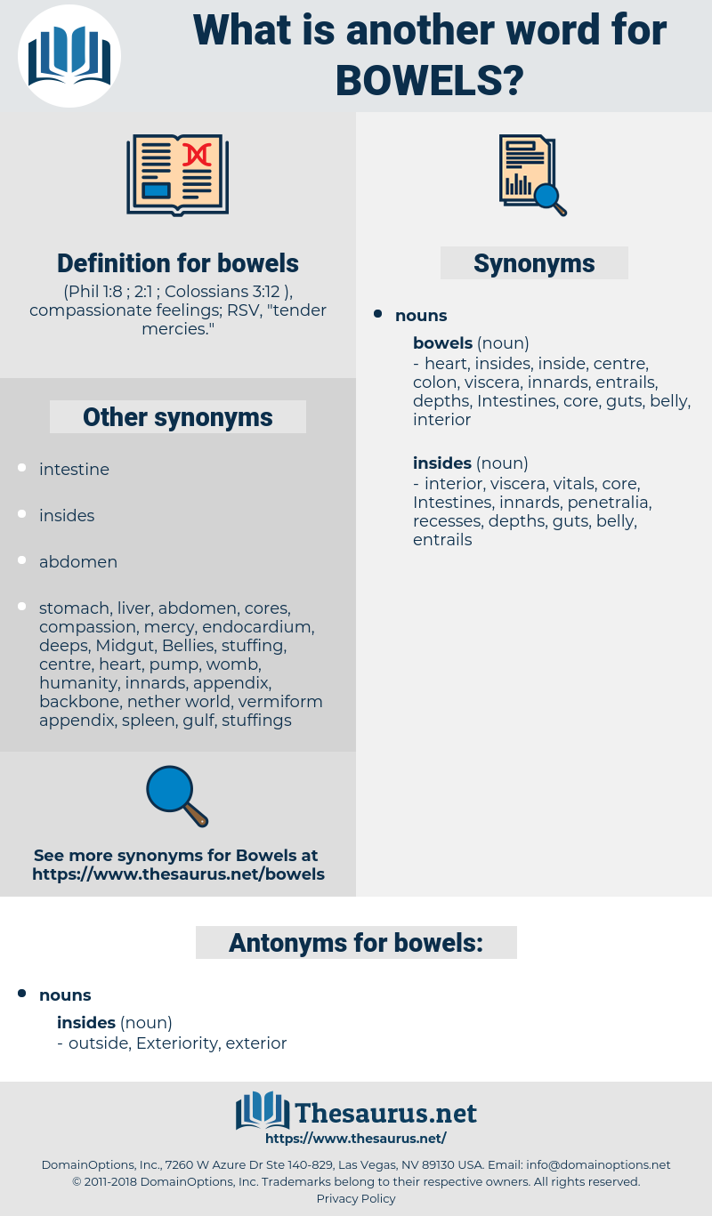 bowels, synonym bowels, another word for bowels, words like bowels, thesaurus bowels