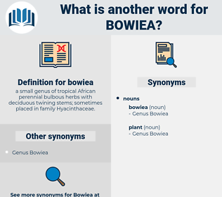 bowiea, synonym bowiea, another word for bowiea, words like bowiea, thesaurus bowiea