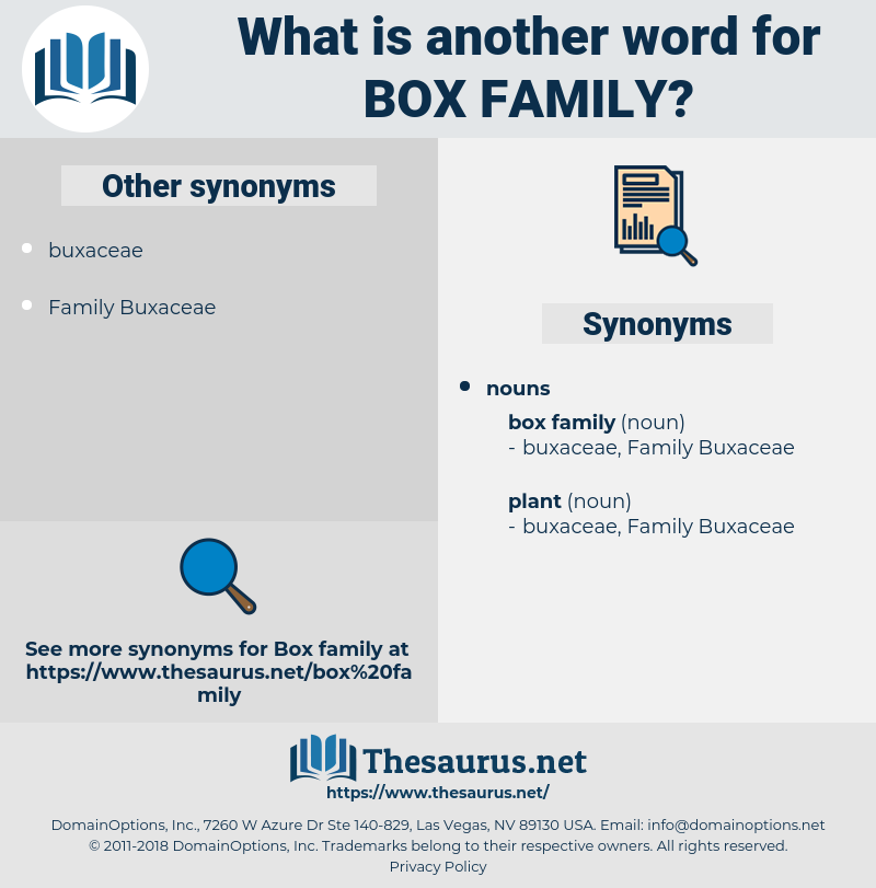 box family, synonym box family, another word for box family, words like box family, thesaurus box family