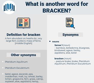 bracken, synonym bracken, another word for bracken, words like bracken, thesaurus bracken
