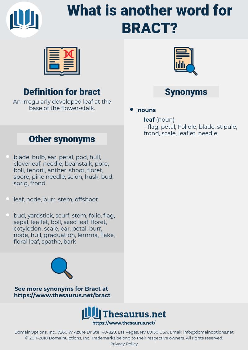 bract, synonym bract, another word for bract, words like bract, thesaurus bract