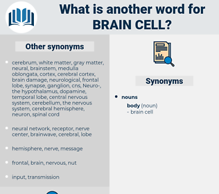 brain cell, synonym brain cell, another word for brain cell, words like brain cell, thesaurus brain cell