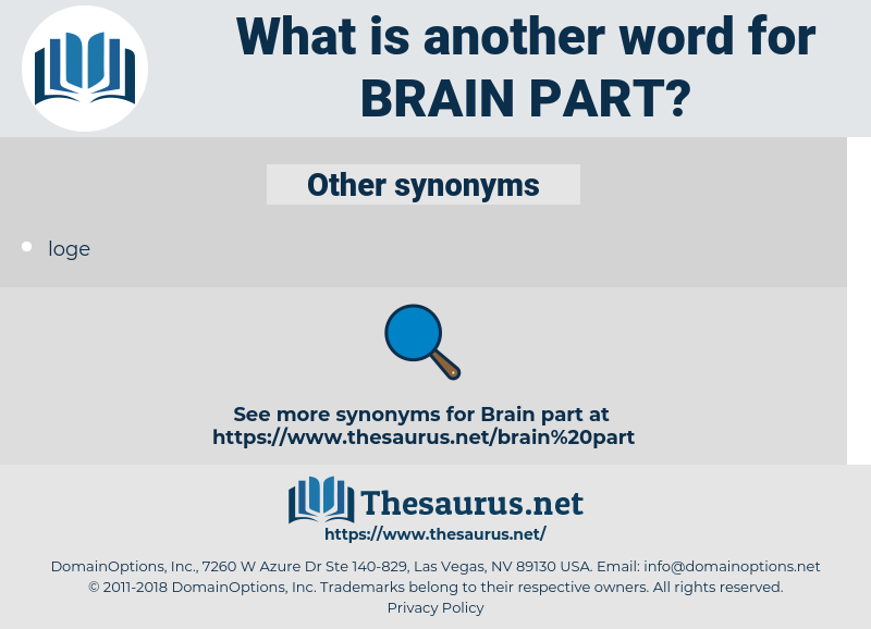 brain part, synonym brain part, another word for brain part, words like brain part, thesaurus brain part