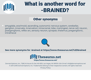 Brained, synonym Brained, another word for Brained, words like Brained, thesaurus Brained