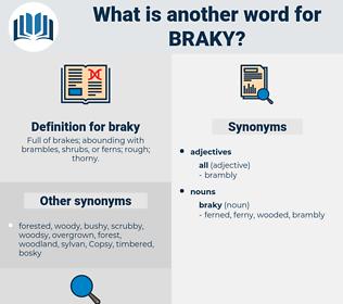 braky, synonym braky, another word for braky, words like braky, thesaurus braky