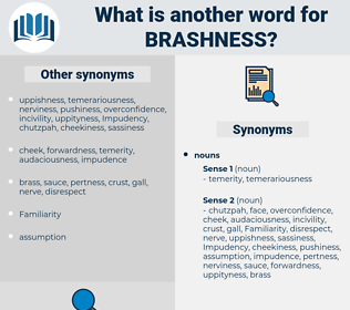 brashness, synonym brashness, another word for brashness, words like brashness, thesaurus brashness