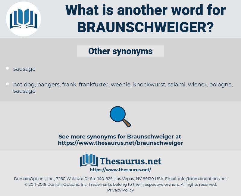 Braunschweiger, synonym Braunschweiger, another word for Braunschweiger, words like Braunschweiger, thesaurus Braunschweiger