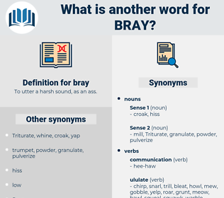 bray, synonym bray, another word for bray, words like bray, thesaurus bray