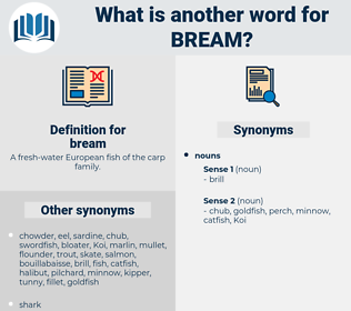 bream, synonym bream, another word for bream, words like bream, thesaurus bream