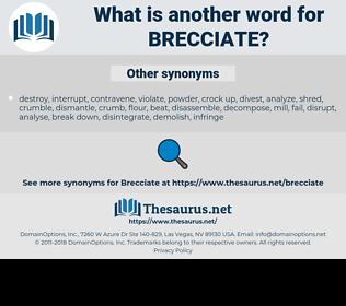 brecciate, synonym brecciate, another word for brecciate, words like brecciate, thesaurus brecciate