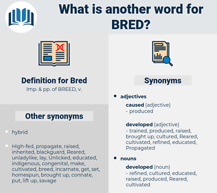 Bred, synonym Bred, another word for Bred, words like Bred, thesaurus Bred
