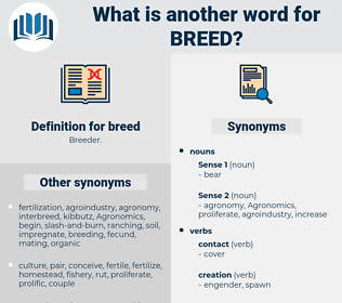 breed, synonym breed, another word for breed, words like breed, thesaurus breed