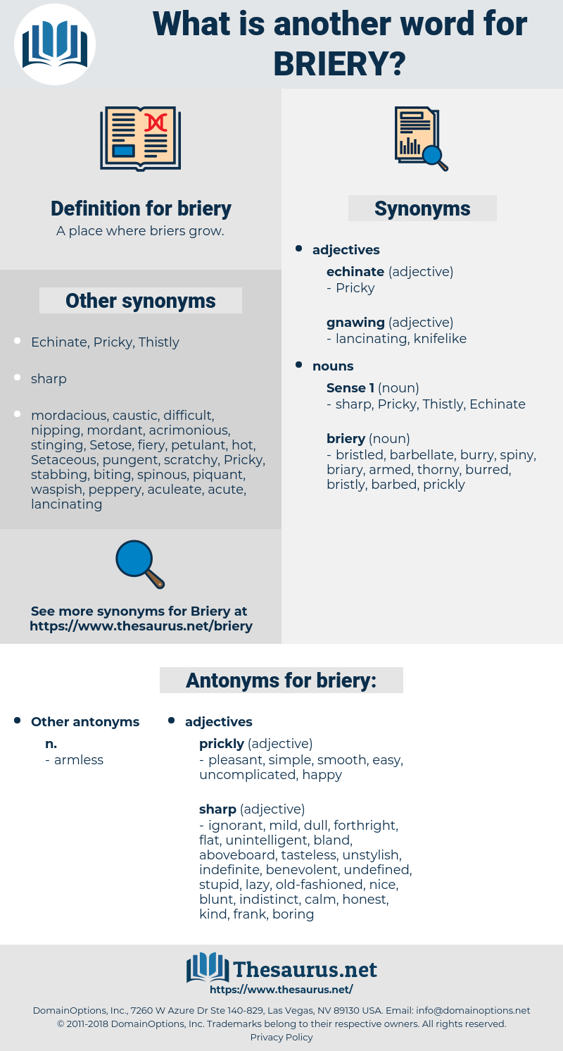 briery, synonym briery, another word for briery, words like briery, thesaurus briery