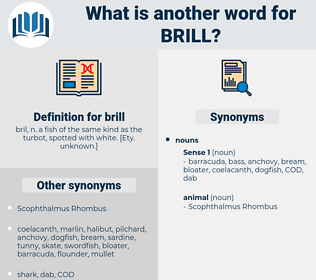 brill, synonym brill, another word for brill, words like brill, thesaurus brill