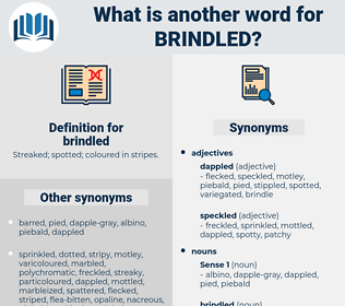 brindled, synonym brindled, another word for brindled, words like brindled, thesaurus brindled