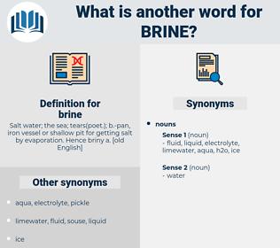 brine, synonym brine, another word for brine, words like brine, thesaurus brine