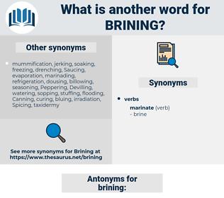 brining, synonym brining, another word for brining, words like brining, thesaurus brining