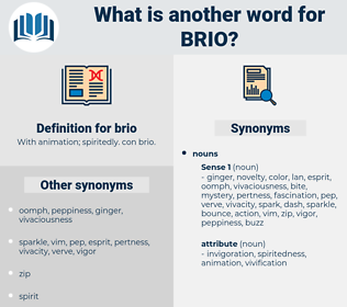 brio, synonym brio, another word for brio, words like brio, thesaurus brio