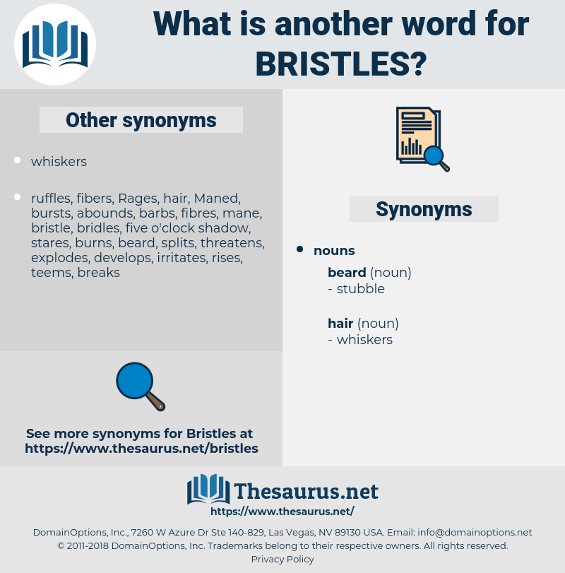 bristles, synonym bristles, another word for bristles, words like bristles, thesaurus bristles