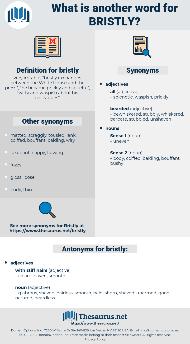 bristly, synonym bristly, another word for bristly, words like bristly, thesaurus bristly