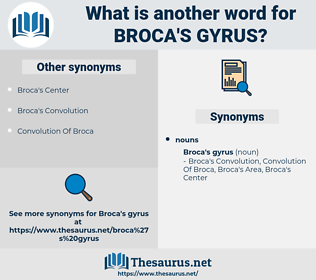 Broca's Gyrus, synonym Broca's Gyrus, another word for Broca's Gyrus, words like Broca's Gyrus, thesaurus Broca's Gyrus