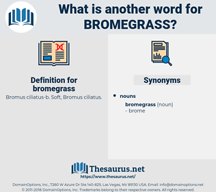 bromegrass, synonym bromegrass, another word for bromegrass, words like bromegrass, thesaurus bromegrass