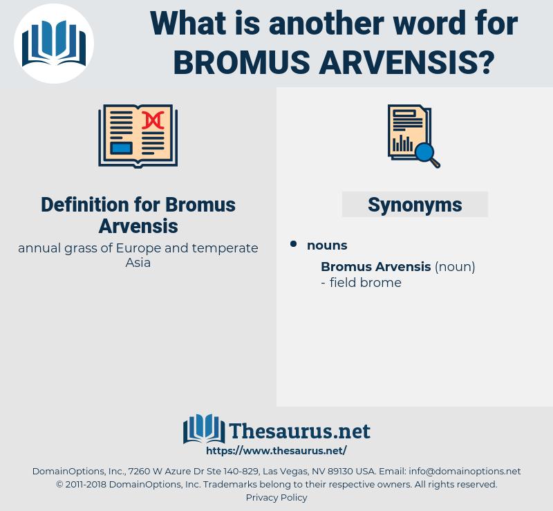 Bromus Arvensis, synonym Bromus Arvensis, another word for Bromus Arvensis, words like Bromus Arvensis, thesaurus Bromus Arvensis