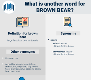 brown bear, synonym brown bear, another word for brown bear, words like brown bear, thesaurus brown bear