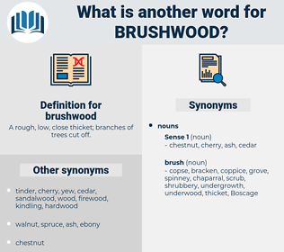 brushwood, synonym brushwood, another word for brushwood, words like brushwood, thesaurus brushwood