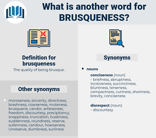brusqueness, synonym brusqueness, another word for brusqueness, words like brusqueness, thesaurus brusqueness