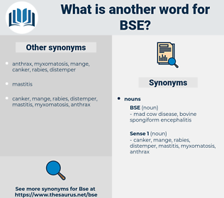 bse, synonym bse, another word for bse, words like bse, thesaurus bse
