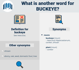 buckeye, synonym buckeye, another word for buckeye, words like buckeye, thesaurus buckeye