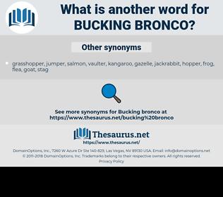 bucking bronco, synonym bucking bronco, another word for bucking bronco, words like bucking bronco, thesaurus bucking bronco