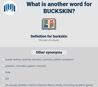 buckskin, synonym buckskin, another word for buckskin, words like buckskin, thesaurus buckskin