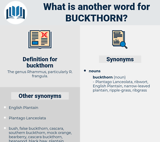 buckthorn, synonym buckthorn, another word for buckthorn, words like buckthorn, thesaurus buckthorn