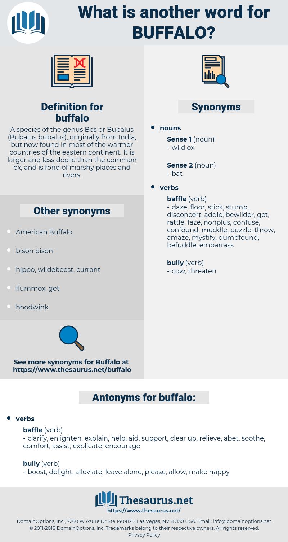 buffalo, synonym buffalo, another word for buffalo, words like buffalo, thesaurus buffalo