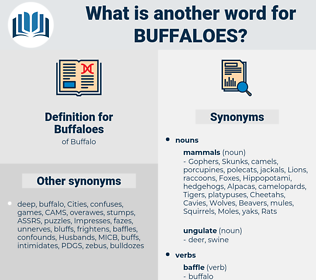 Buffaloes, synonym Buffaloes, another word for Buffaloes, words like Buffaloes, thesaurus Buffaloes