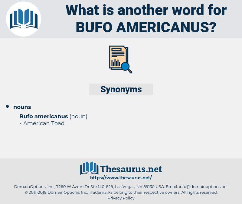 Bufo Americanus, synonym Bufo Americanus, another word for Bufo Americanus, words like Bufo Americanus, thesaurus Bufo Americanus