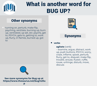 bug up, synonym bug up, another word for bug up, words like bug up, thesaurus bug up