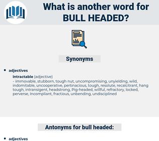 bull headed, synonym bull headed, another word for bull headed, words like bull headed, thesaurus bull headed