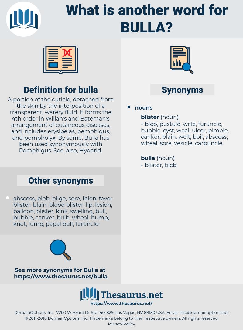 bulla, synonym bulla, another word for bulla, words like bulla, thesaurus bulla