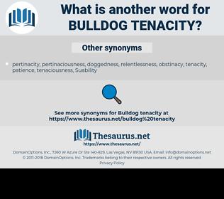 bulldog tenacity, synonym bulldog tenacity, another word for bulldog tenacity, words like bulldog tenacity, thesaurus bulldog tenacity
