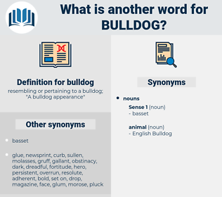 bulldog, synonym bulldog, another word for bulldog, words like bulldog, thesaurus bulldog