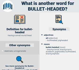bullet-headed, synonym bullet-headed, another word for bullet-headed, words like bullet-headed, thesaurus bullet-headed