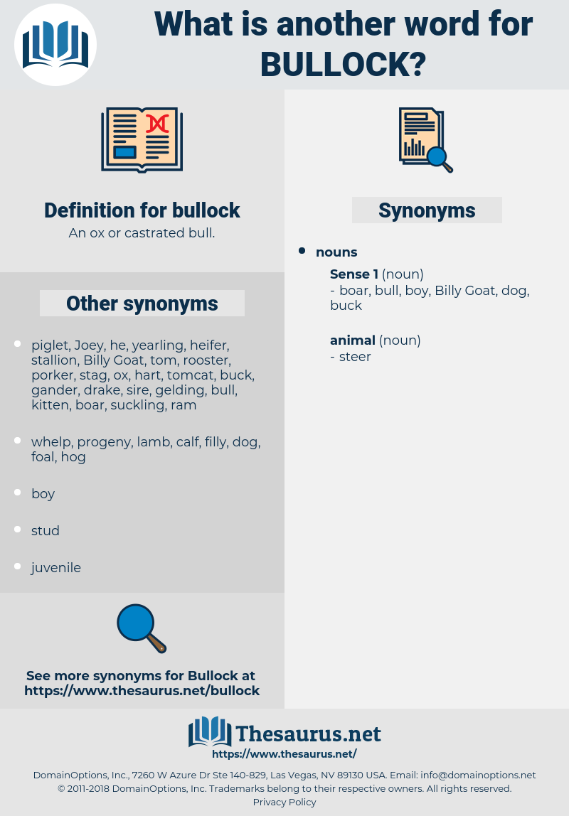 bullock, synonym bullock, another word for bullock, words like bullock, thesaurus bullock